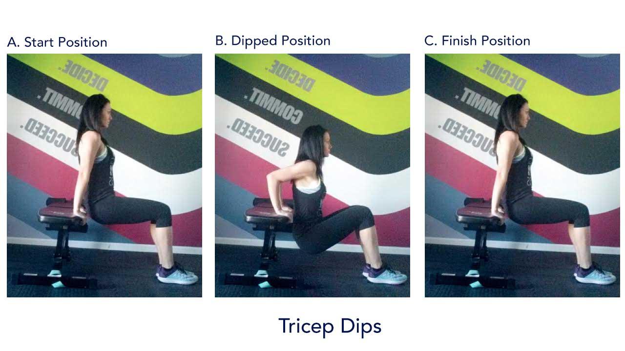 tricep_dips