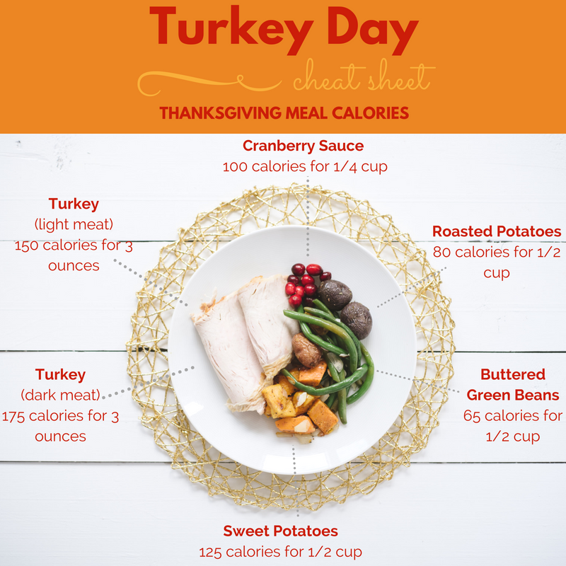 turkey-light-meat-175-calories-4